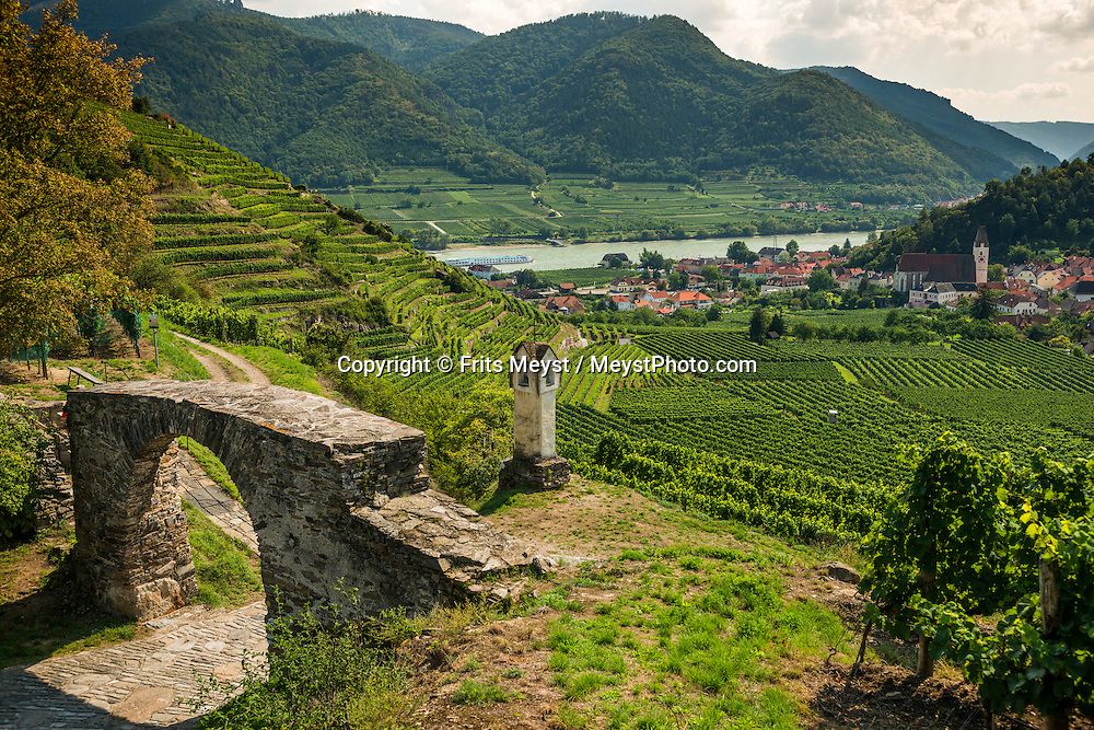 Spitz, Danube, Lower Austria, September 2015. The village of Spitz an der Donau is situated on the Welterbesteig hiking trail, squeezed between the Donau and the Rolling hills with vineyards. Austria's most spectacular section of the Danube is the dramatic stretch of river between Krems an der Donau and Melk, known as the Wachau. Here the landscape is characterised by vineyards, forested slopes, wine-producing villages and imposing fortresses at nearly every bend. The Wachau is today a Unesco World Heritage site, due to its harmonious blend of natural and cultural beauty. Photo by Frits Meyst / MeystPhoto.com