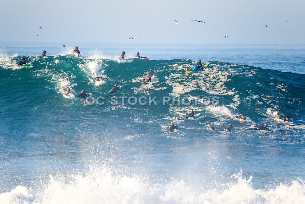Surfing the Wedge Newport Beach