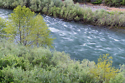 Trinity River, Shasta-Trinity National Forest, California