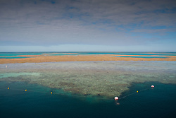 Great Barrier Reef, Hamilton Island, Queensland, Australia
