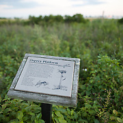 September 9, 2012 - Queens, NY : Stretching across more than 9,000 acres, Jamaica Bay Wildlife Refuge --part of the Gateway National Recreation Area -- contains fresh and salt water habitats teeming with wildlife. The 1.5-mile West Pond Trail provides a good vantage point for bird watching and boasts a picturesque view of the Manhattan skyline. Pictured here, one of many interpretive signs. CREDIT: Karsten Moran for The New York Times