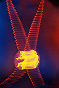 Motion blur of a glowing bolo on a woman's chest.Black light