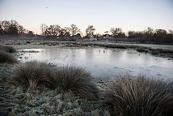 © Licensed to London News Pictures. 16/12/2017. London, UK. A frozen landscape in Richmond Park. Parts of the UK are experiencing freezing temperatures today with snow expected in parts. London, UK. Photo credit: Ben Cawthra/LNP