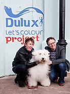 Dulux Let's Colour Project