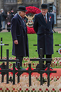 A giant wreath representing the Army - The Duke of Edinburgh, Life Member, Royal British Legion, accompanied by Prince Harry, visit the Field of Remembrance at Westminster Abbey  - 10 November 2016, London.