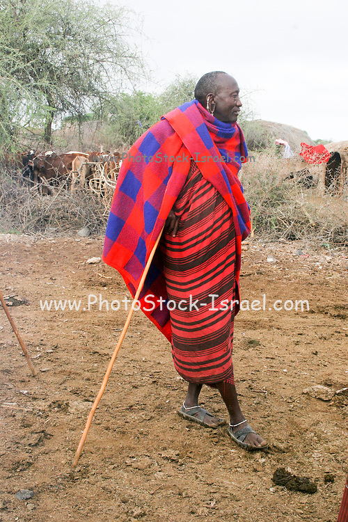 Africa, Tanzania, Maasai an ethnic group of semi-nomadic people male warrior at rest