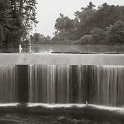 Pontoosuc Lake Dam with great blue heron, West branch Housatonic River