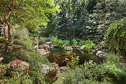 11203_Elmview_Fish_Pond_2_F.jpg