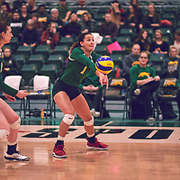 5th year outside hitter, Ashlee Sandiford (1) of the Regina Cougars during the Women's Volleyball home game on Sat Jan 19 at Centre for Kinesiology, Health & Sport. Credit: Arthur Ward/Arthur Images