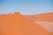 Hikers climbing up a sand dune ridge at Sossusvlei, Namib-Naukluft National Park, Namibia.