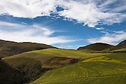 Farming inside reserve<br /> Antisana Ecological Reserve<br /> Cordillera Real, Andes<br /> ECUADOR, South America