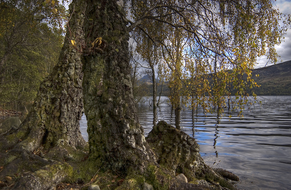 The shores of Loch Rannoch, Scotland, on an early autumn day. In the background the distinctive outline of Schiehallion, the Fairy Hill.<br />
