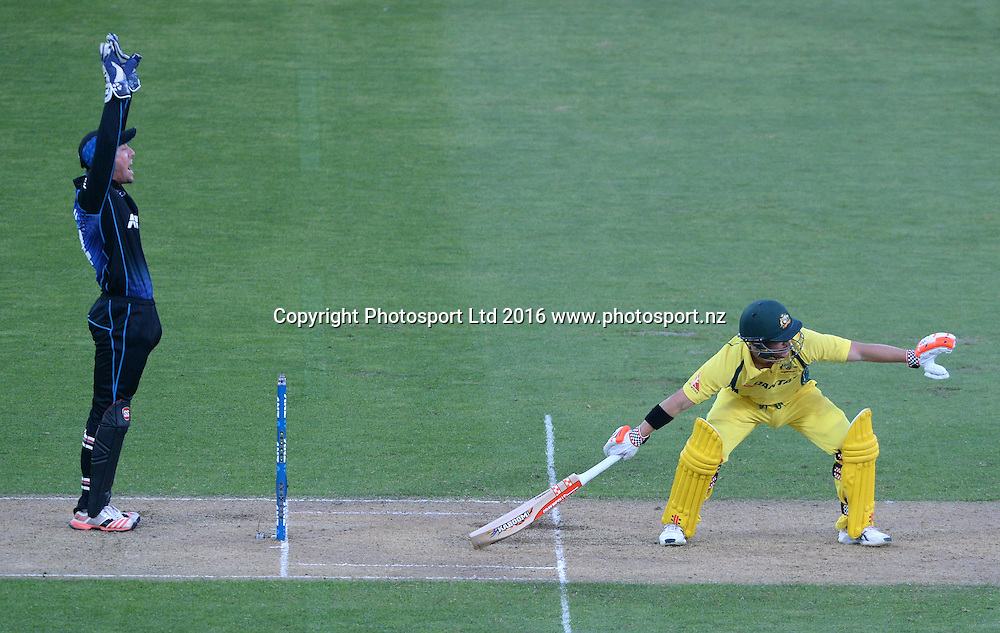 Australia's David Warner is out LBW in the 2nd match of the Chappell-Hadlee ODI series, New Zealand vs Australia, Westpac Stadium, Wellington, Saturday, February, 06, 2016. Copyright photo: Kerry Marshall / www.photosport.nz