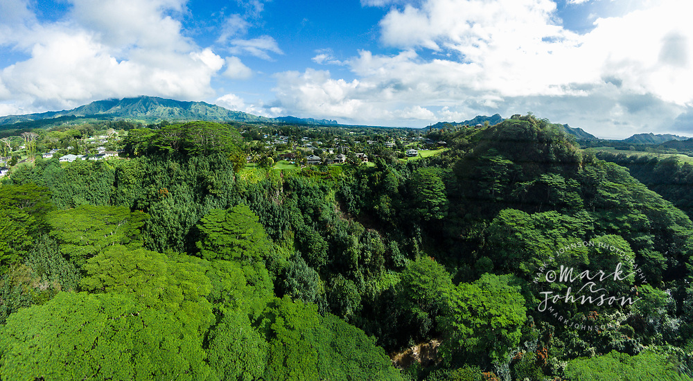 Aerial panorama photograph of the North Fork of the Wailua River, Kauai, Hawaii