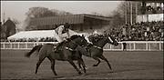 "The last meeting at Folkestone Racecourse, Westenhanger, Kent, 18th December 2012..Quartz Du Montceau riden by Marc Goldstien wins the final race, the ""Save the last race"" for Eastwell Manor Handicap Steeple Chase"