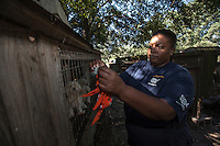 Tia Pope, manager of puppy mill investigations, marks a pen during a raid on a puppy mill in Johnston, SC on Tuesday, Sept. 11, 2012. HSUS workers found over 200 dogs, nine horses and 30-40 fowl.