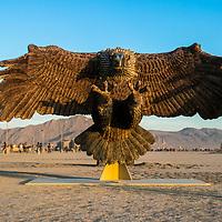 Burning Man Extra