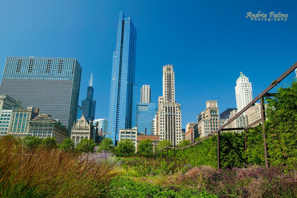 Lurie Garden, Millennium Park, Chicago