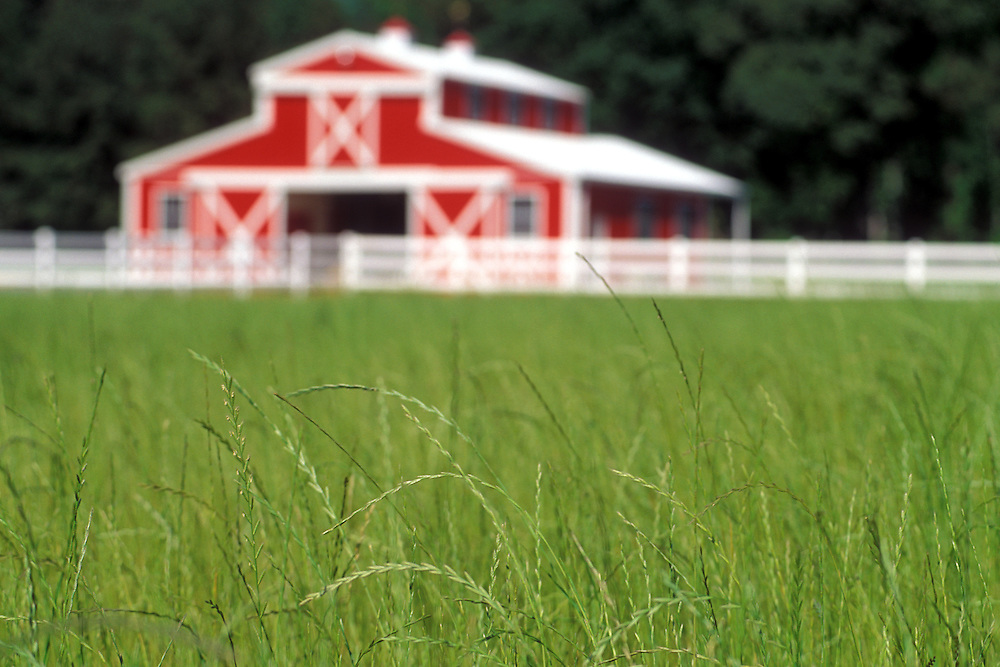 Landscape of Hay Field with Barn and Fence in East Texas