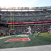 Brian Hartline, Miami Dolphins, goes in for a touchdown during the New York Jets Vs Miami Dolphins  NFL American Football game at MetLife Stadium, East Rutherford, NJ, USA. 1st December 2013. Photo Tim Clayton