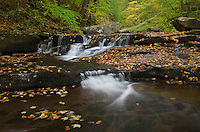 Cascades of Kitchen Creek in Glen Leigh, Ricketts Glen State Park, Pennsylvania