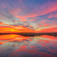 South Florida nature photography from outdoor photographer Juergen Roth showing a stunning sunset across Loxahatchee National Wildlife Refuge located west of Boynton Beach in Palm Beach County, FL. Arthur R. Marshall Loxahatchee National Wildlife Refuge is an amazing area for viewing wildlife and photography in Florida. <br /> <br /> Sunset photography images of the Arthur R. Marshall Loxahatchee National Wildlife Refuge area are available as museum quality photo prints, canvas prints, wood prints, acrylic prints or metal prints. Fine art prints may be framed and matted to the individual liking and decorating needs:<br /> <br /> https://juergen-roth.pixels.com/featured/loxahatchee-national-wildlife-refuge-juergen-roth.html<br /> <br /> All digital nature photo images are available for photography image licensing at www.RothGalleries.com. Please contact me direct with any questions or request.<br /> <br /> Good light and happy photo making!<br /> <br /> My best,<br /> <br /> Juergen<br /> Prints: http://www.rothgalleries.com<br /> Photo Blog: http://whereintheworldisjuergen.blogspot.com<br /> Instagram: https://www.instagram.com/rothgalleries<br /> Twitter: https://twitter.com/naturefineart<br /> Facebook: https://www.facebook.com/naturefineart