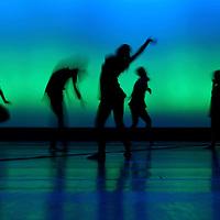 061408 Citie Ballet Perspective Show
