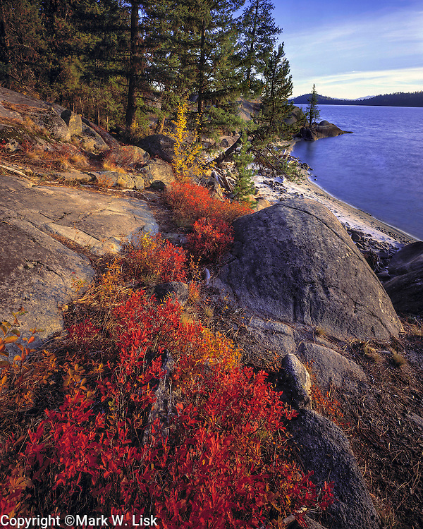 Red leaves in the rocky shoreline of Payette Lake, McCall Idaho.