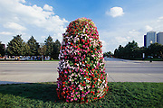 Display of impatien flowers near Navy Pier, Chicago, Illinois