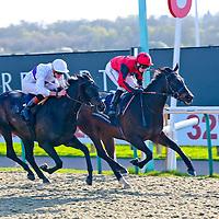 Tilstarr - Oisin Murphy wins from Havelovewilltravel - James Doyle<br /> 32Red.com Fillies&acute; Handicap<br /> Lingfield Park 9/4/2014.<br /> &copy;cranhamphoto.com