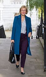 © Licensed to London News Pictures. 21/09/2017. London, UK. Leader of the House of Commons Andrea Leadsom arriving in Downing Street to attend a Cabinet meeting this morning. Photo credit : Tom Nicholson/LNP