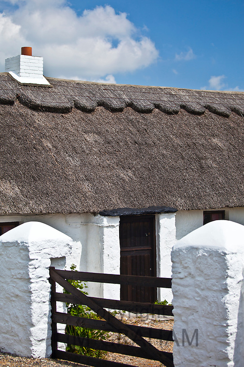 Newly whitewashed and renovated thatched cottage near Fethard-on-Sea, County Wexford, Ireland