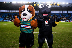 Wasps half time activations mascot race - Mandatory by-line: Robbie Stephenson/JMP - 05/01/2020 - RUGBY - Ricoh Arena - Coventry, England - Wasps v Northampton Saints - Gallagher Premiership Rugby