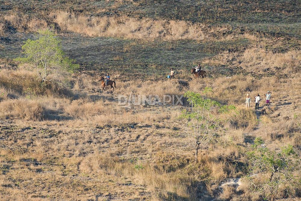 Ngada culture farmers commuting home, Mata Menge, So'a Basin, Flores.