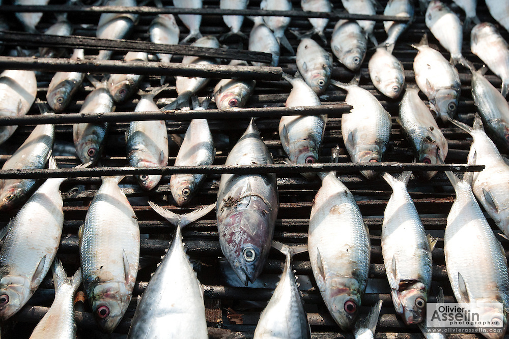 Fish laid out to be to be smoked in the West Point slum of Monrovia, Montserrado county, Liberia on Monday April 2, 2012.
