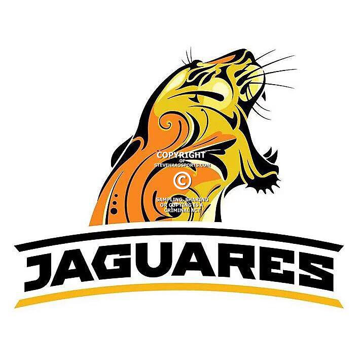 19/2 Jaguars vs Lions at JHB