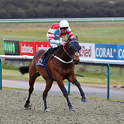 Lingfield 5th March
