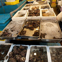 Bulk snails for sale at Tsukiji Fish Market, Tokyo, Japan.
