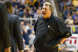 West Virginia Mountaineers head coach Bob Huggins yells down the bench against the Texas Longhorns during the second half at the WVU Coliseum.