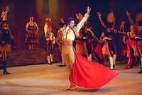 Bolshoi Ballet in Don Quixote