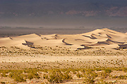 Evening light on Mesquite Flat sand dunes, Death Valley National Park, California