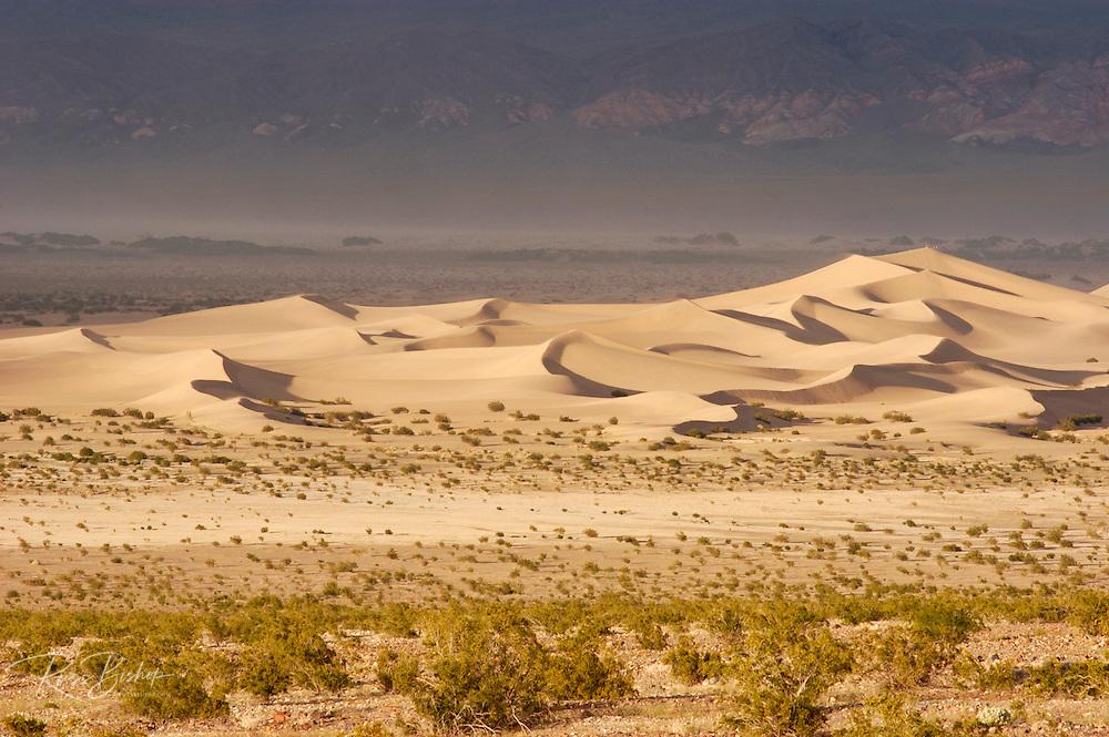 Evening light on Mesquite Flat sand dunes, Death Valley National Park, California