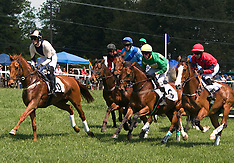 2009 Foxfield Spring Races