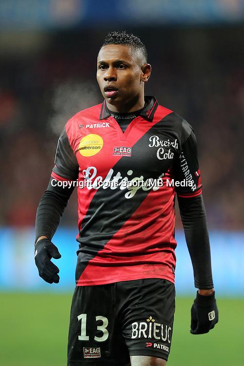 Christophe MANDANNE  - 24.01.2015 - Guingamp / Lorient - 22eme journee de Ligue1<br />Photo : Vincent Michel / Icon Sport *** Local Caption ***