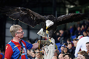 Kayla The Eagle mid flight during the Capital One Cup match between Crystal Palace and Charlton Athletic at Selhurst Park, London, England on 23 September 2015. Photo by Michael Hulf.