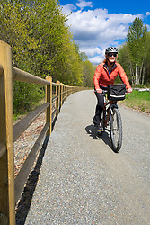 United States, Washington, Kirkland. A woman rides a mountain bike along the Cross Kirkland Corridor, a former railroad line converted to a trail for walking and bicycling.  MR