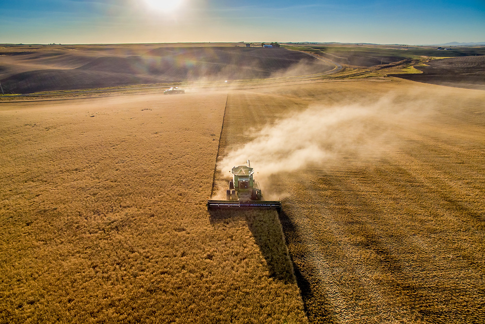 Agriculture in the Palouse - Barley Harvest in Reardan, Washington.