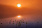 sunrise and fog on Silent Lake<br /> Silent Lake Provincial Park<br /> Ontario<br /> Canada