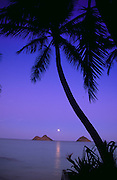 Moonrise, Mokulua Island, Lanikai, Oahu, Hawaii, USA<br />