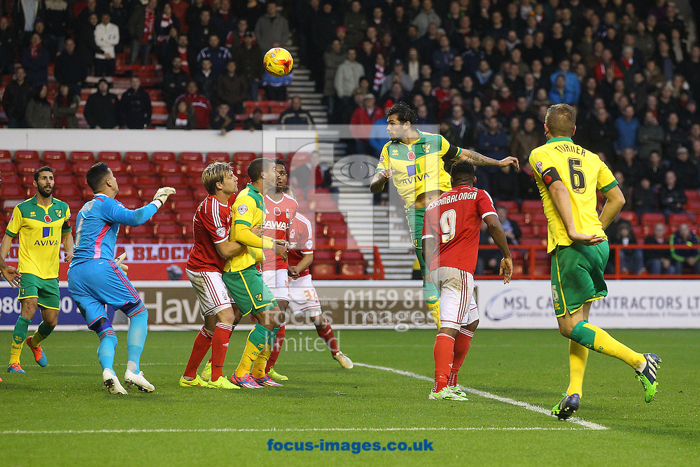 Bradley Johnson of Norwich puts the ball n the net but the goal is disallowed for a foul earlier in the move by Michael Turner of Norwich during the Sky Bet Championship match at the City Ground, Nottingham<br /> Picture by Paul Chesterton/Focus Images Ltd +44 7904 640267<br /> 08/11/2014